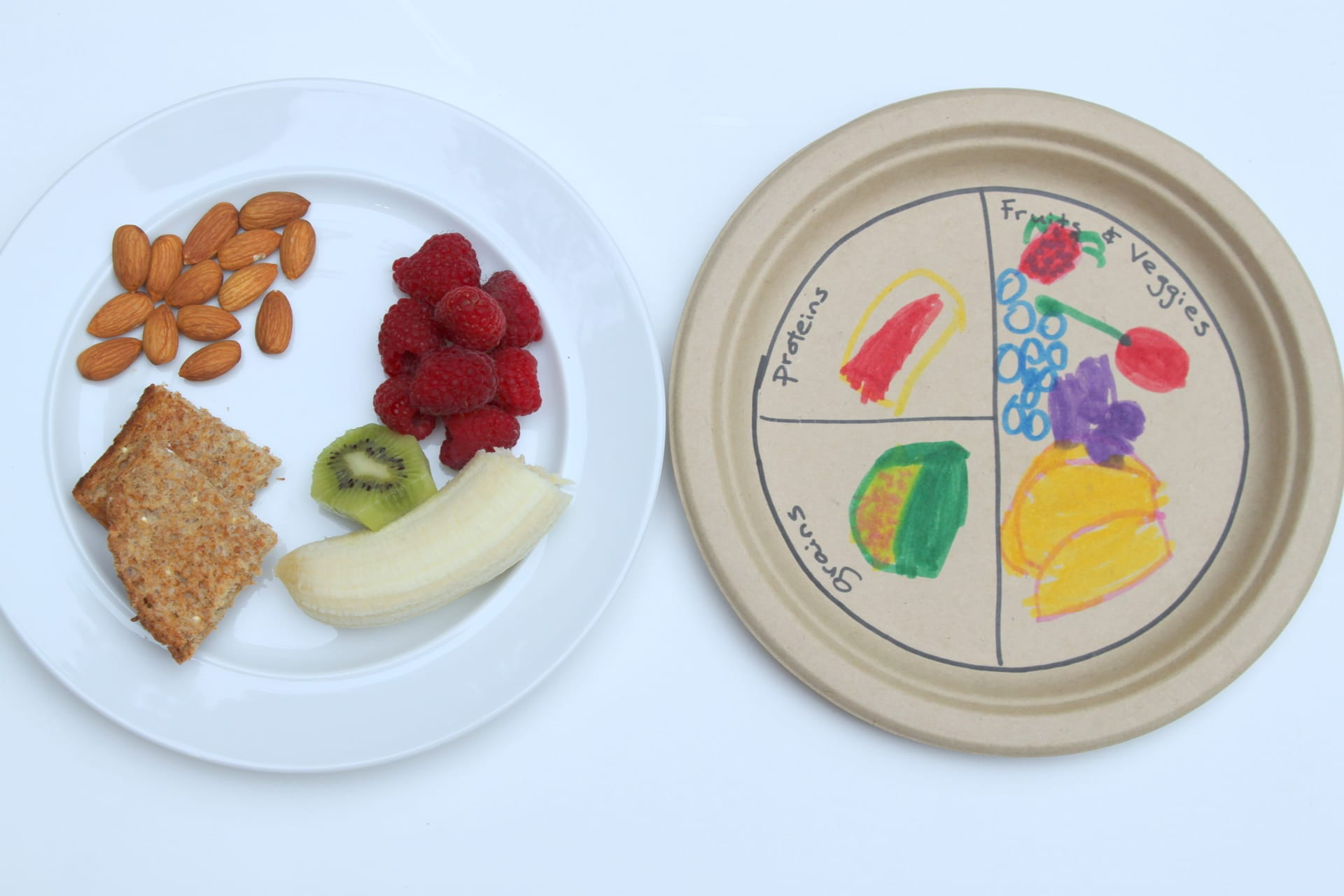 healthy food craft ideas healthy plate 4651
